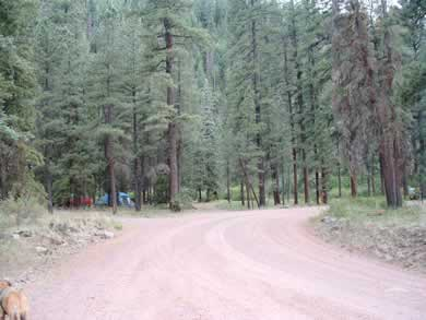 Looking back at Aspen Campground