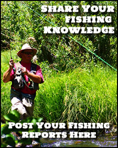 Share your fishing knowledge