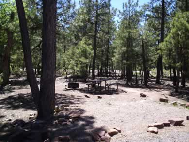 A campsite at Mogollon Campground