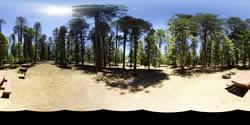 Knoll Lake Campground Panorama Campsite 28