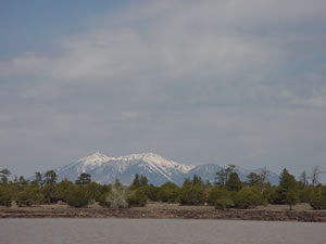The view of the San Fransisco Peaks from Ashurst Lake